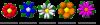 Übersicht Mini Flowers